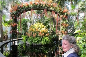Espectculo de orqudeas en Jardn Botnico de Nueva York